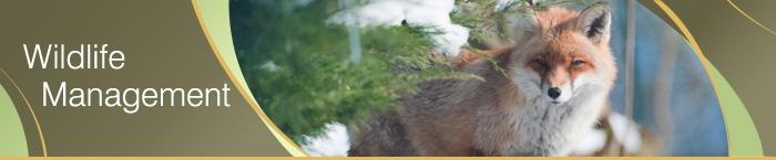 Ontario Wildlife Management Banner